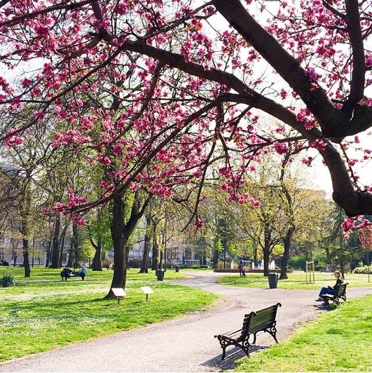 belgrade in spring
