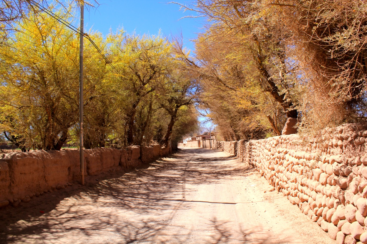 Visiting the Driest Place in the World: San Pedro de Atacama