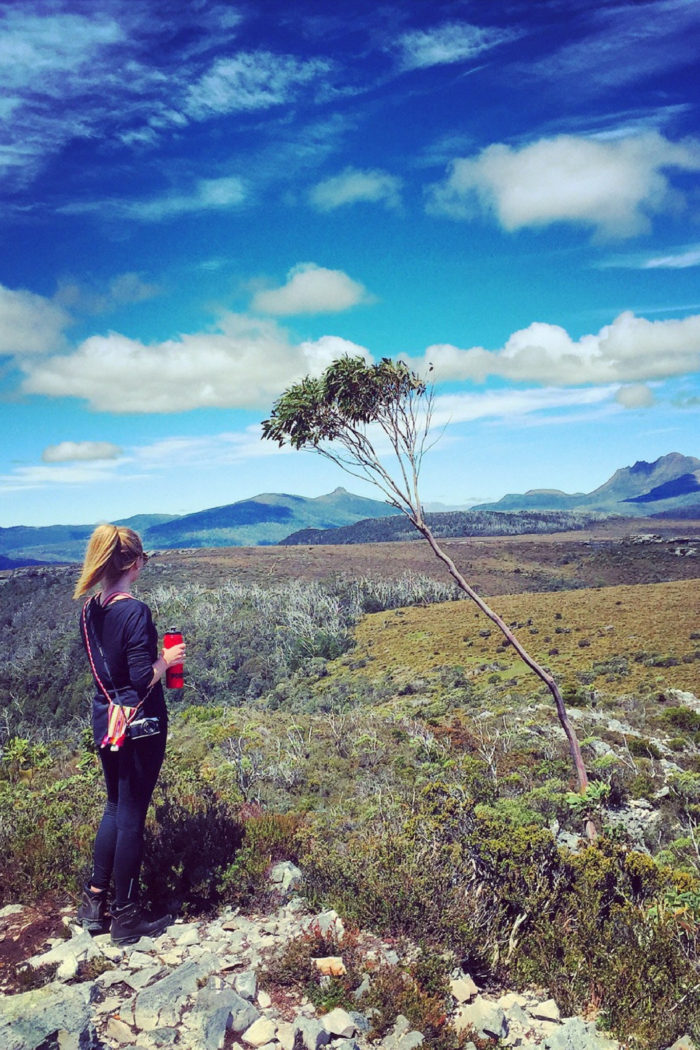 Hiking the Overland Track in Tasmania