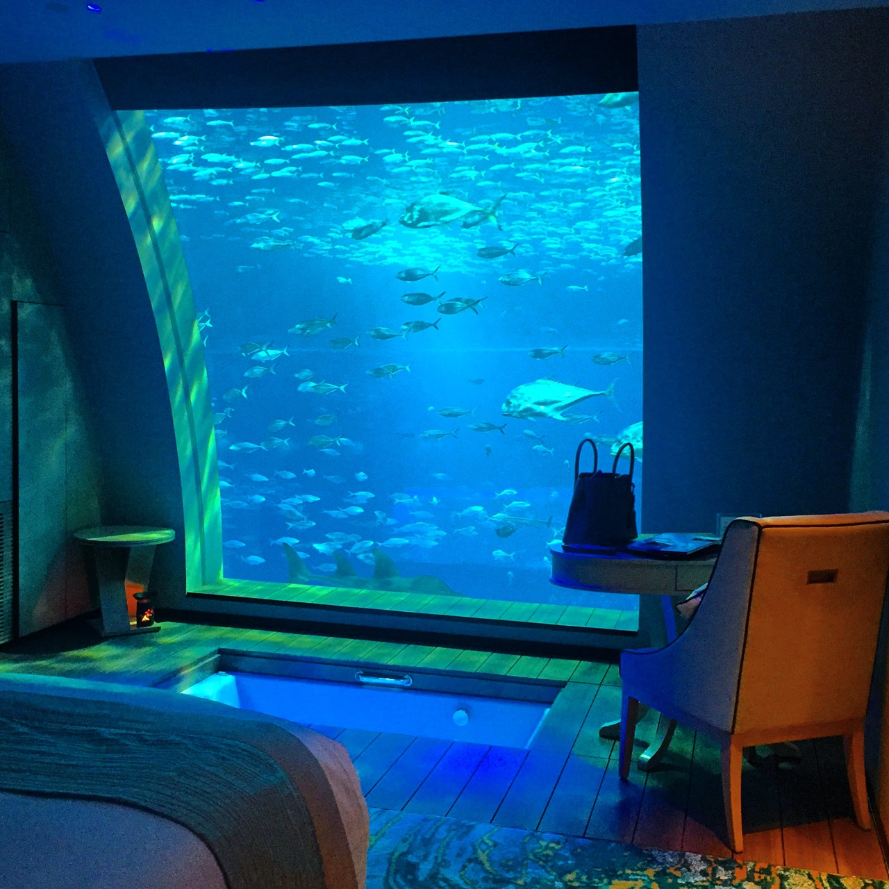 Aquarium hotel aquarium hotel room under water maldives for Fish hotel tank