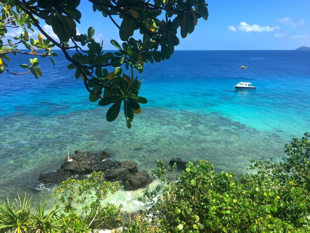 Royal_Davui_Fiji