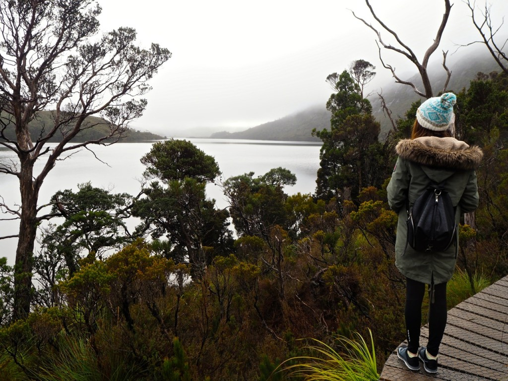 Cradle_Mountain
