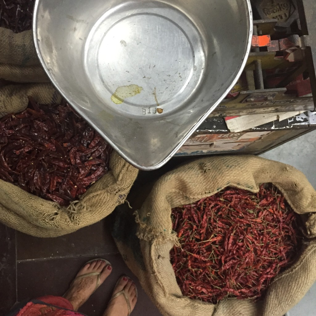 India Fresh Spices and Chillies