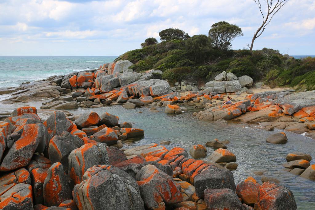 Best Food East Coast Tasmania