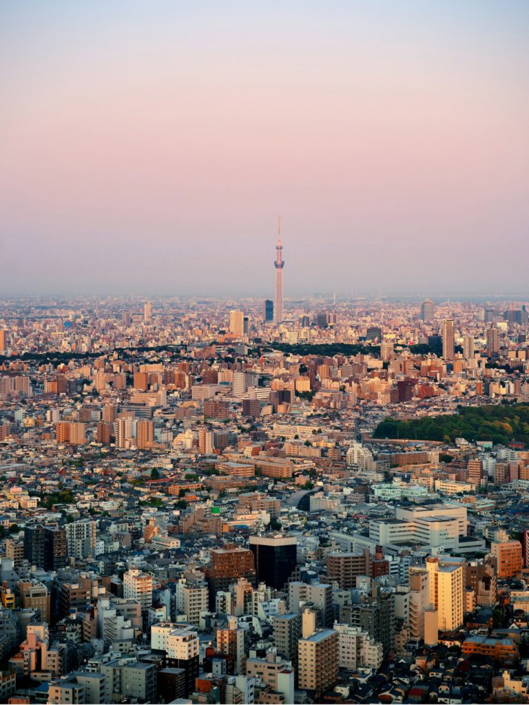 Guide to Tokyo Japan | WORLD OF WANDERLUST