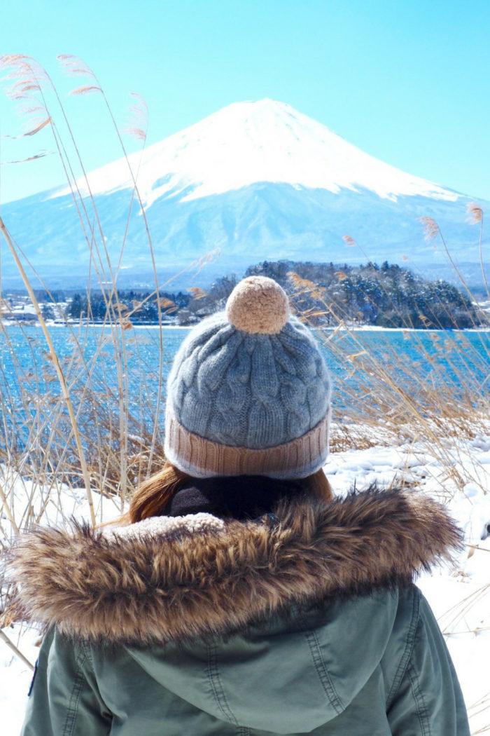 Tokyo Day Trip: Mt Fuji & Hakone