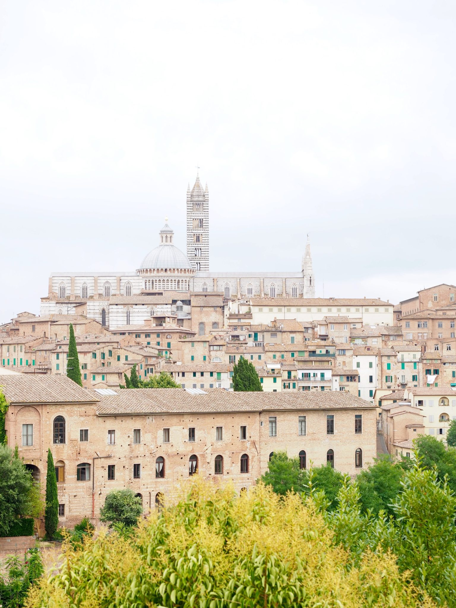 A Quick Guide to Siena, Italy!