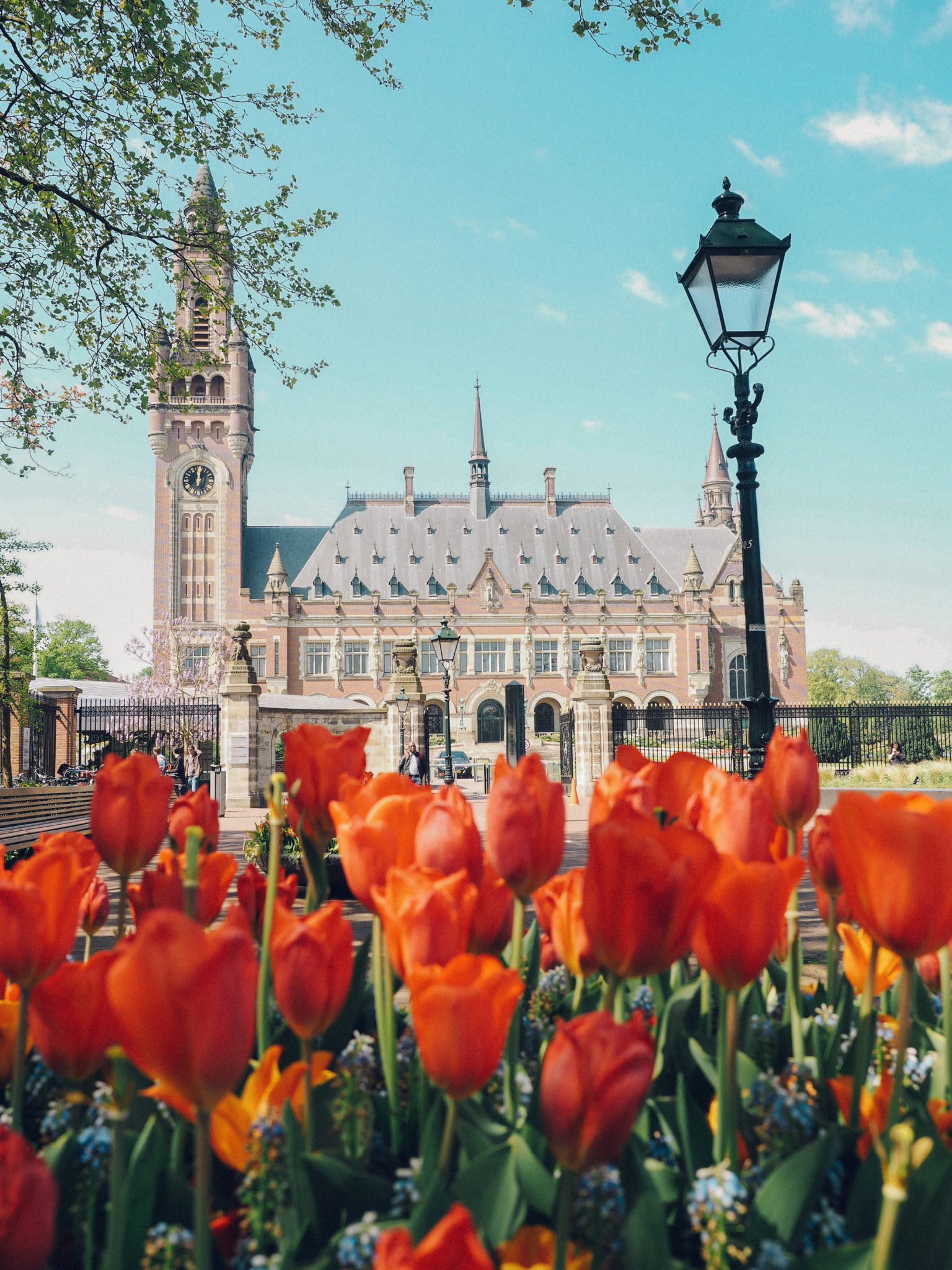 Visiting The Hague in 24 Hours: A complete Guide