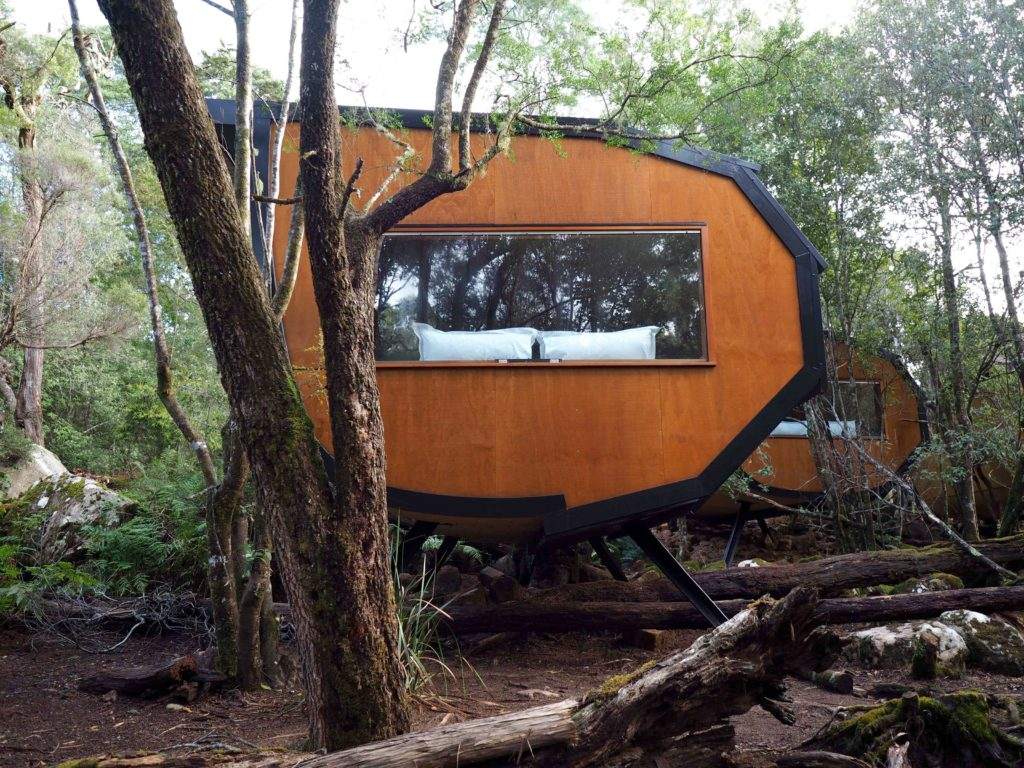 Blue Derby Pods Ride | World of Wanderlust
