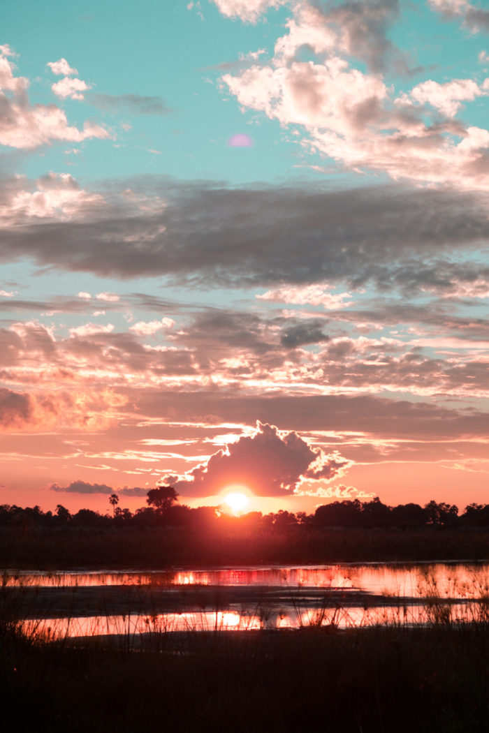 Why Botswana Should be Your Next Safari Destination
