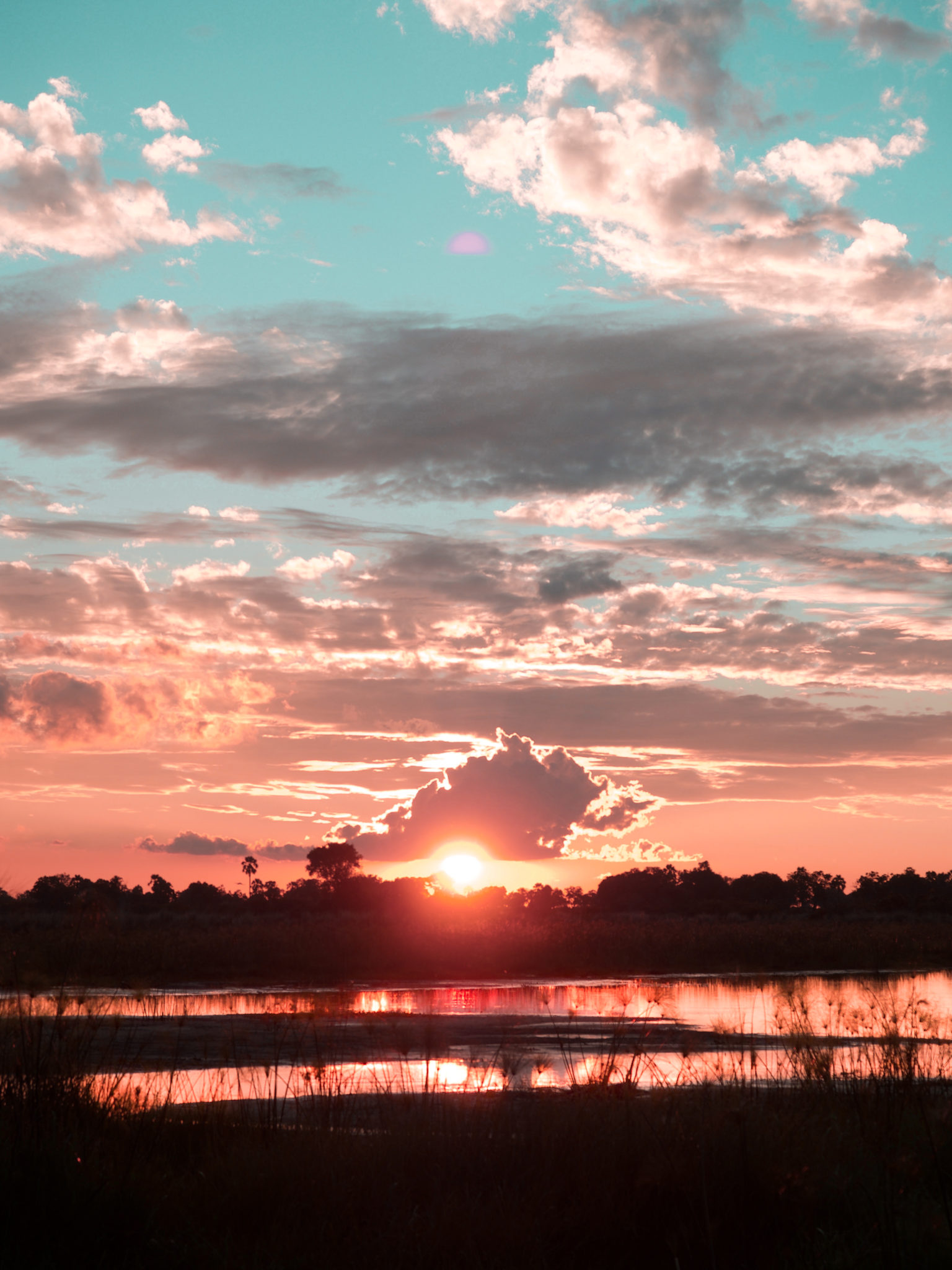 Why Botswana Should be Your Next Safari Destination