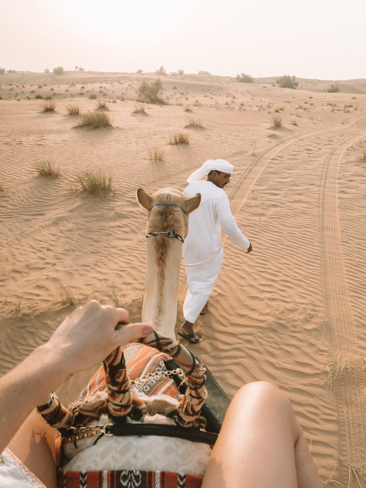 World of Wanderlust in Dubai