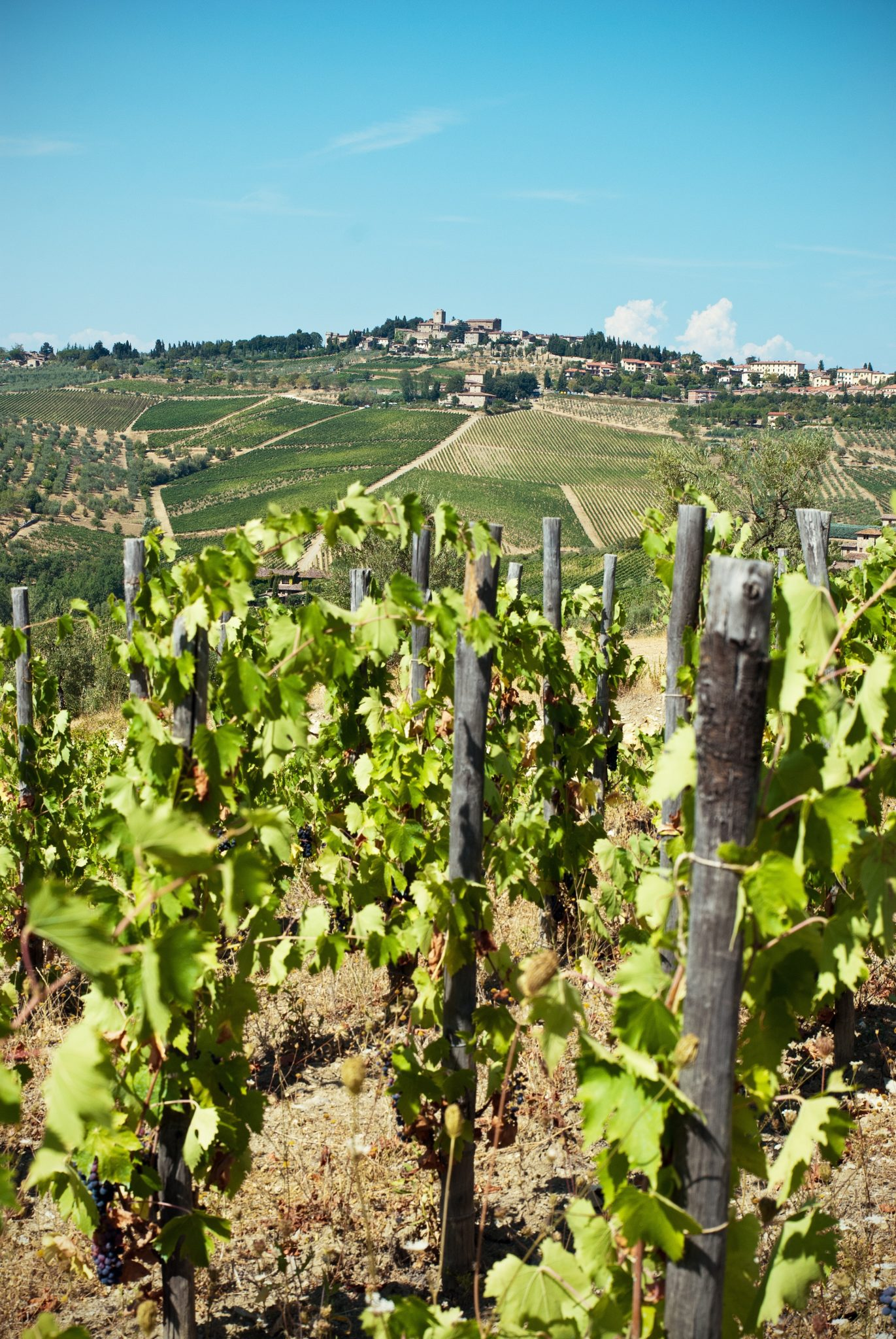 Chianti Italy | WORLD OF WANDERLUST