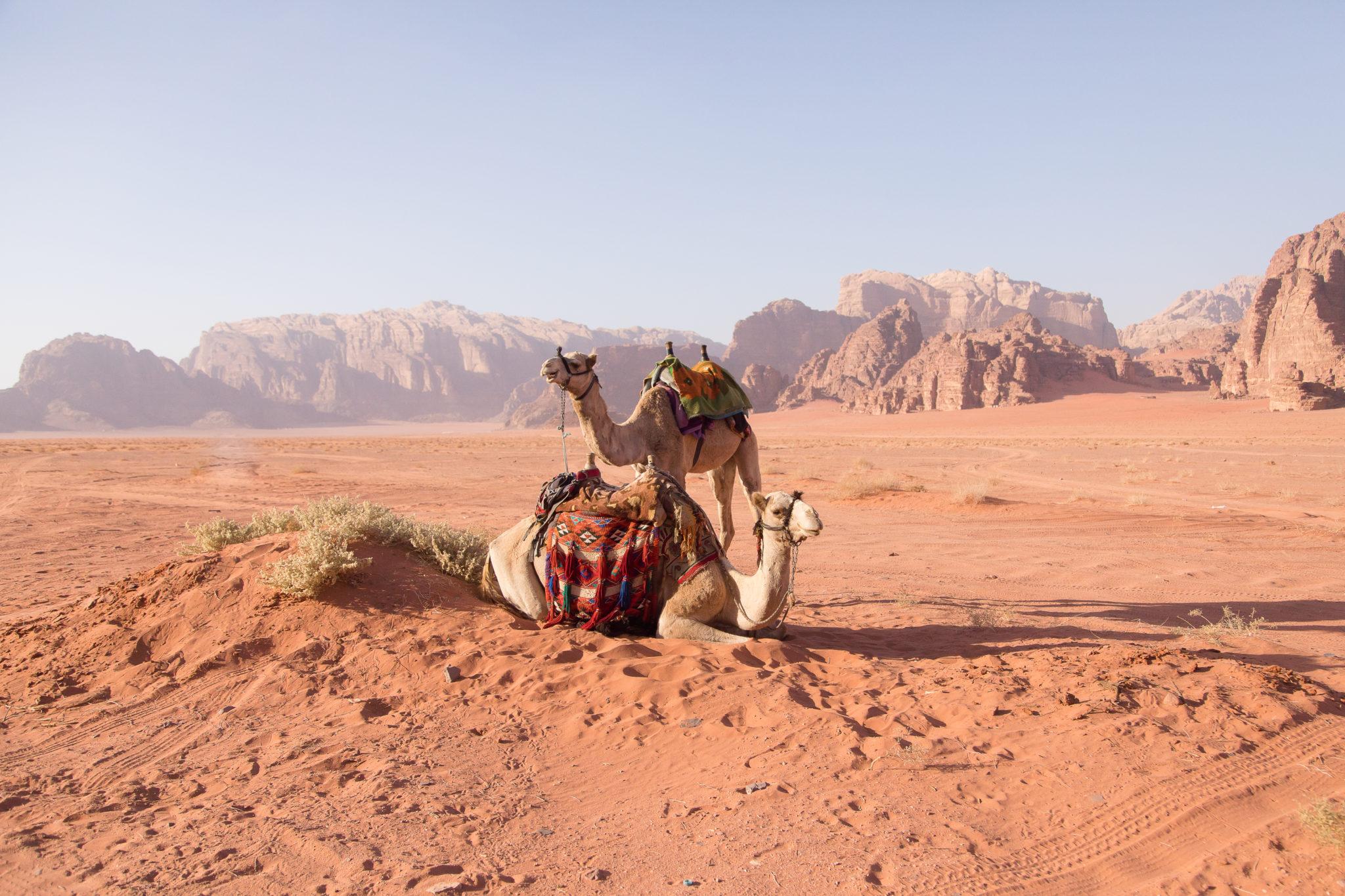 Petra Jordan | WORLD OF WANDERLUST